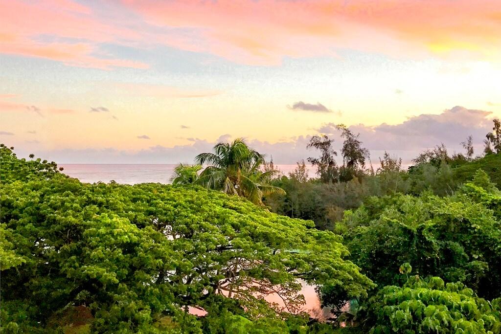 Sea Turtle Hilo Condo – Sunset Views